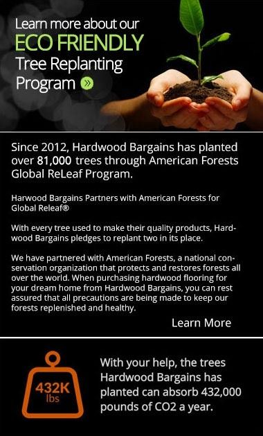Learn more about our ECO FRIENDLY tree replanting program